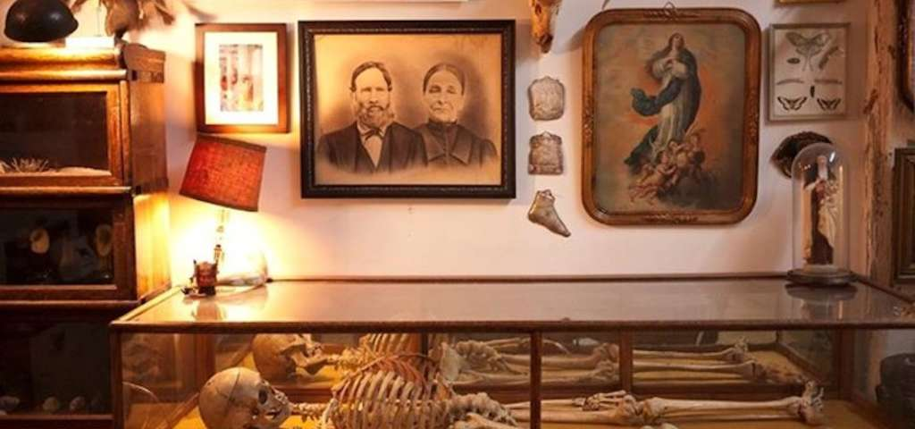 Morbid Anatomy Museum, New York | Roadtrippers