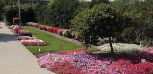 Michigan State University - Horticultural Gardens and Butterfly House