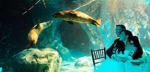 Fresno Chaffee Zoo Private Events