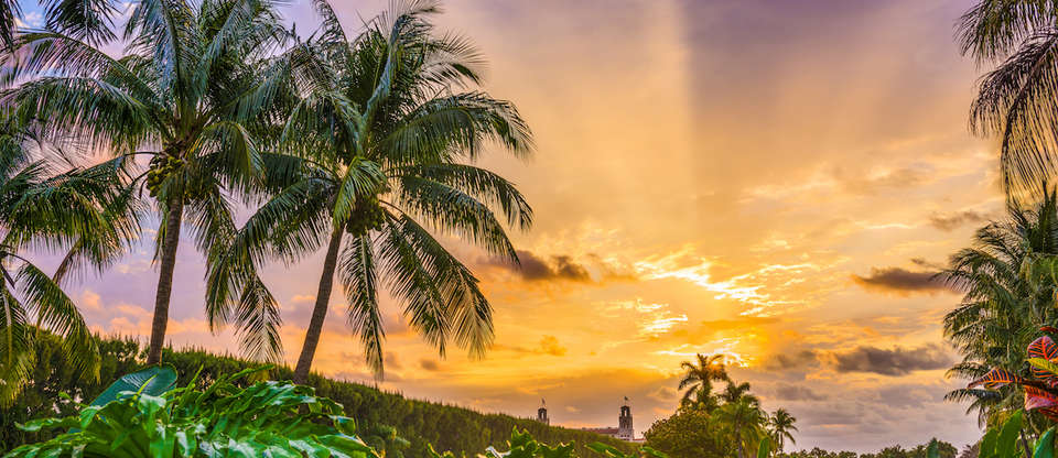 Here's why Palm Beach is a slice of heaven on Earth